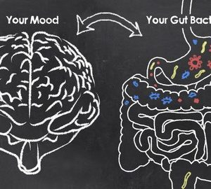 55284706 - mood and gut bacteria with chalk on blackboard